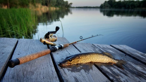 Рыбалка Обои На Рабочий Экран