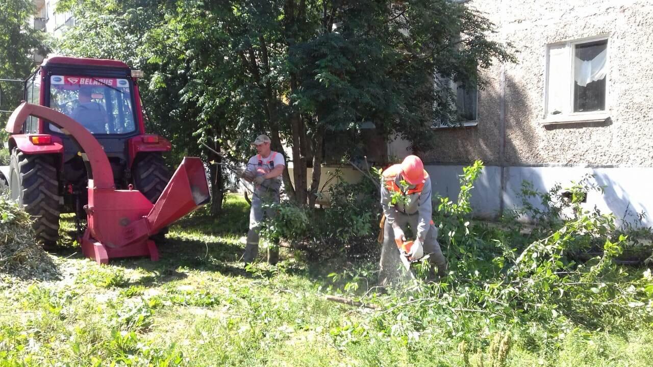 Измельчение веток деревьев. Проспект Строителей дом 36