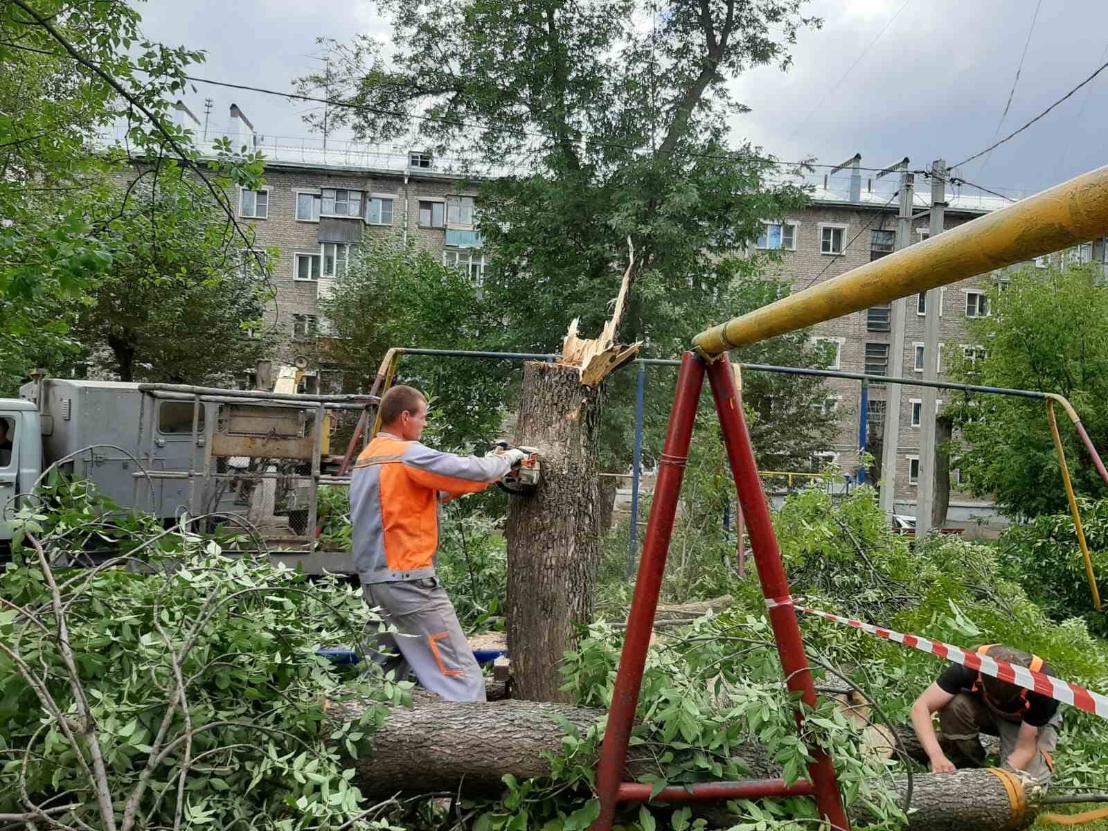 Улица Большева дом 17.Снос аварийного дерева произведен.