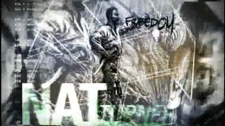 Культурное движение Black Power в США 1954 1968 гг