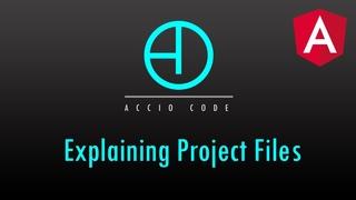 Angular 9 Tutorial: Part 2 - Explaining Project Files