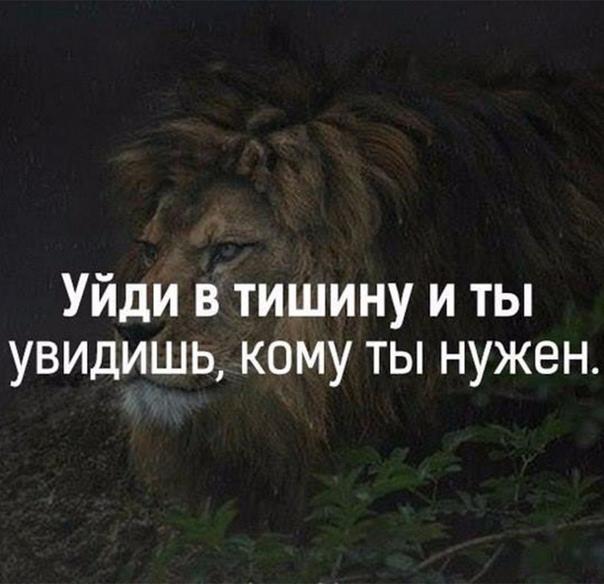 Копилка СБЕРБАНОЧКА https://www.buro-nahodok.ru/showroom/kopilki/sberbanochka/ Для тех, кто предпочитает хранить...