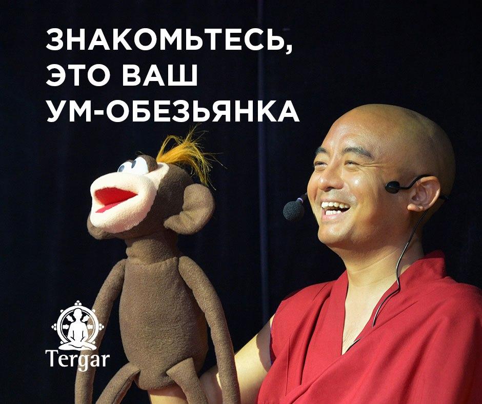 Афиша Екатеринбург ЗНАКОМСТВО С МЕДИТАЦИЕЙ