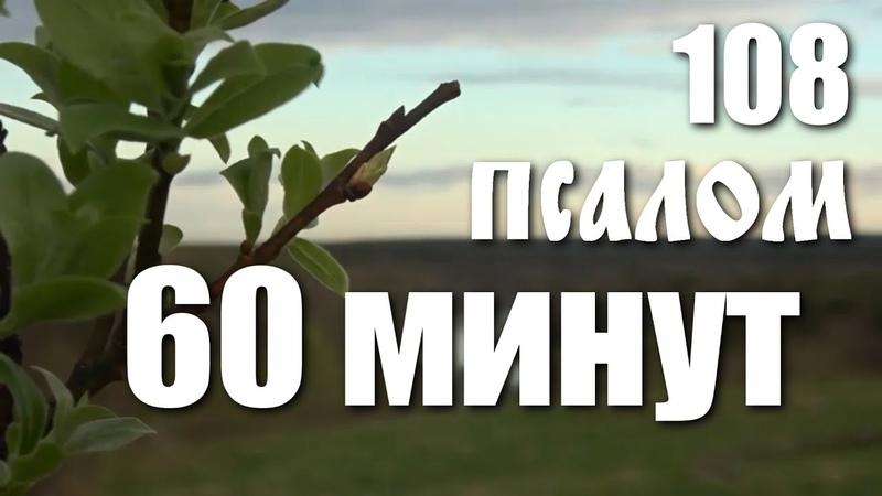 108 ПСАЛОМ ВРАГАМ ВОЗМЕЗДИЕ МОЛИТВА В ЗАЩИТУ