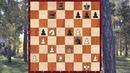 Слабость последней горизонтали в шахматах