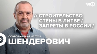 Особое мнение / Виктор Шендерович //