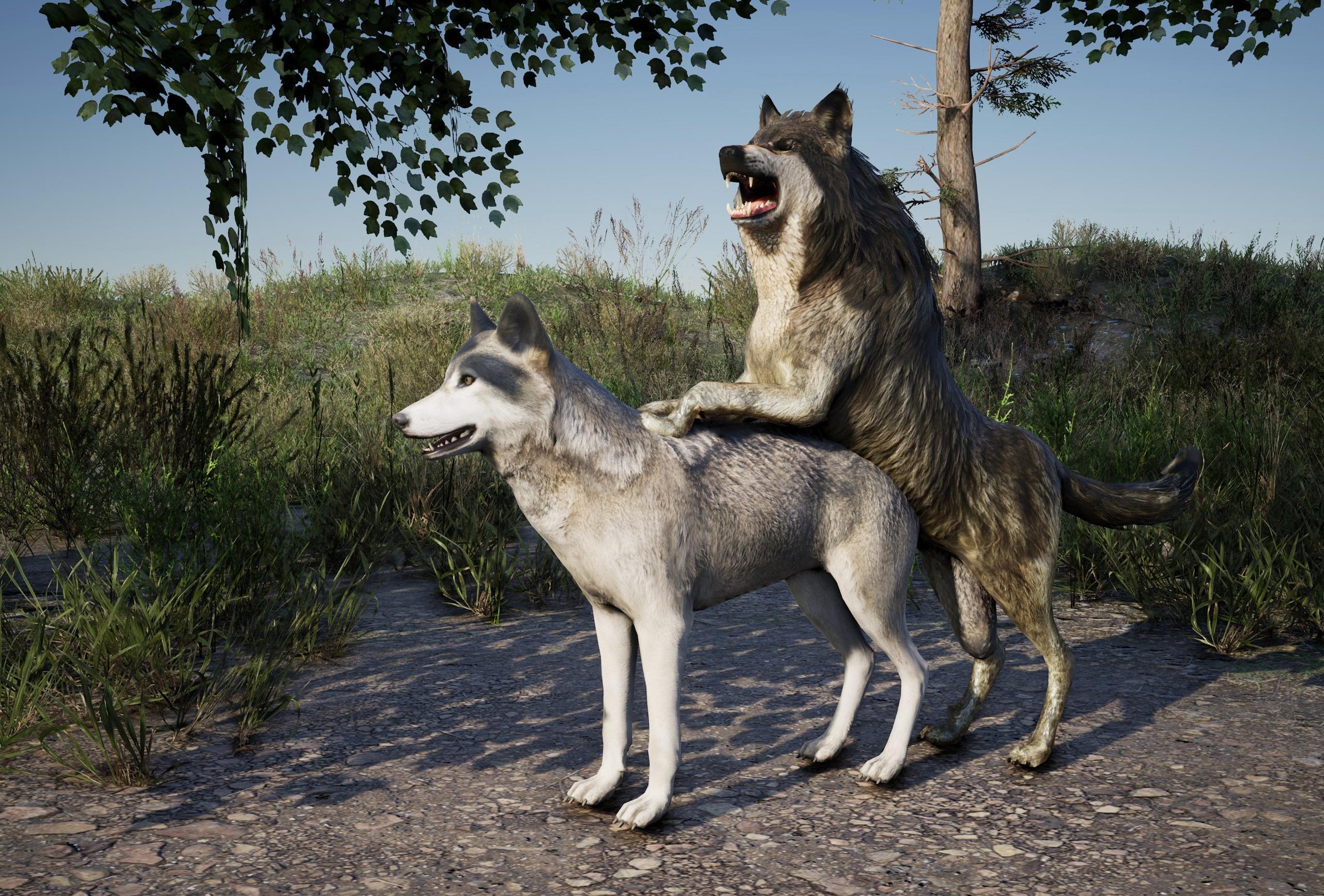 🐾Усердно работаем над волчьими...
