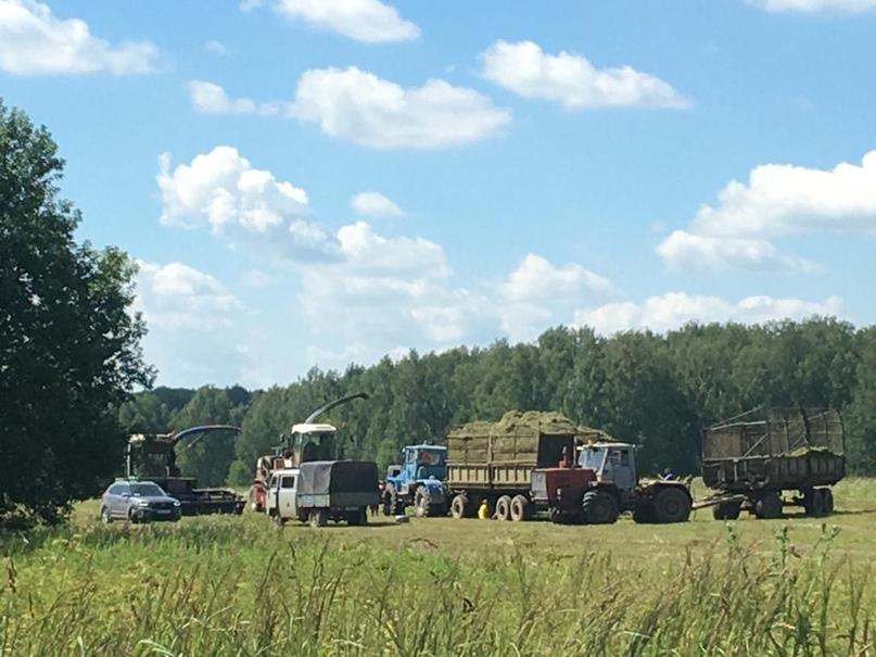Механизаторы хозяйств Агрохолдинга «Союза Маринс Групп» завершили первый этап заготовки кормов