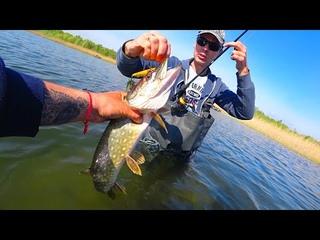Глупая ошибка на рыбалке может привести даже к такому!