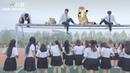 Tik Tok Học Sinh Trung Quốc Đi Học Mà Dẫn BOSS Theo Thế Này