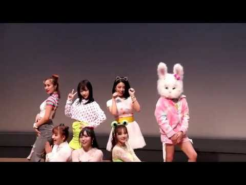 Fancam 직캠 20191124 PinkFantasy 핑크판타지 소꿉장난 Playing House at Playing House fansign event
