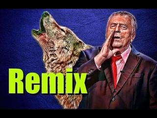 Волк воет Remix ( Жириновский воет ) Vолжанин