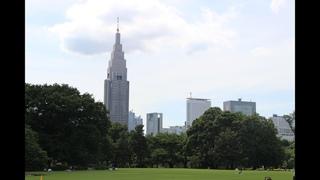 Императорский парк Синдзюку Гёэн (Shinjuku Gyoen National Garden, Japan)