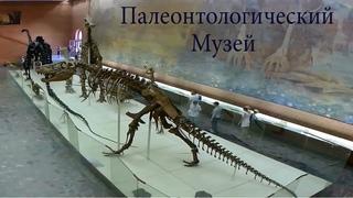 Палеонтологический музей имени Ю.А. Орлова
