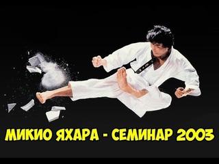 1-й международный семинар по каратэномичи Микио Яхары - 2 | Mikio Yahara seminar 2003