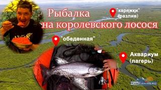 Рыбалка на Камчатке на реке Большая. Трофейная чавыча 2021, сходы, обрывы, клёвые места. Часть 1.