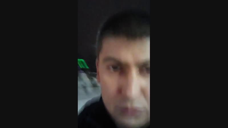 Гоха Перица Live