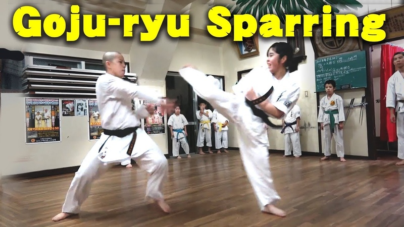 Goju ryu Karate Sparring Sport Kumite Full contact スポーツ組手&フルコンタクト空手 沖縄伝統空手