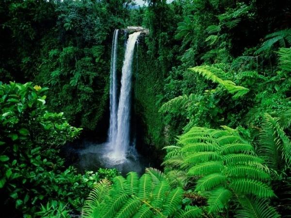 Таинственные острова Самоа, изображение №3