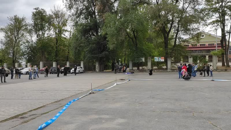 Рыцарская реконструкция на выставки собак в Донецке