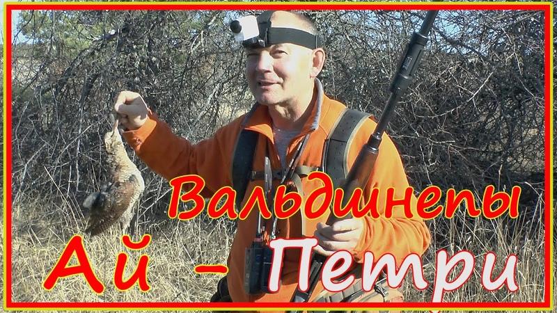 Охота на вальдшнепа в Крыму Chasse à la bécasse en Crimée Сaccia alla beccaccia in Crimea