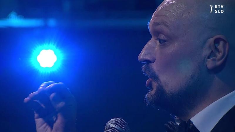 Silence Mr Goodwrong Koncert doma