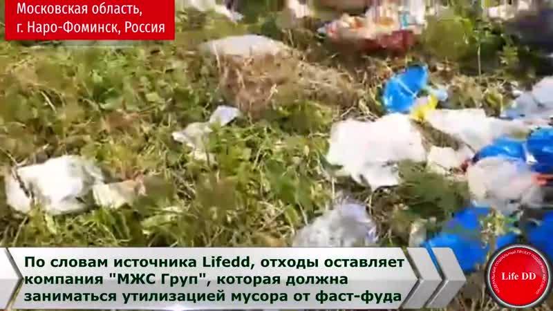 В Московской области в лесу свалка Макдоналдс