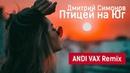 Дмитрий Симонов - Птицей на Юг (ANDI VAX Remix)