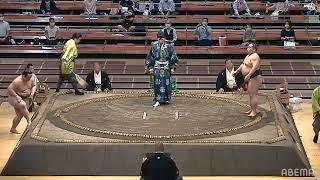 Sumo LIVE Stream – July, 2020 - Day 4