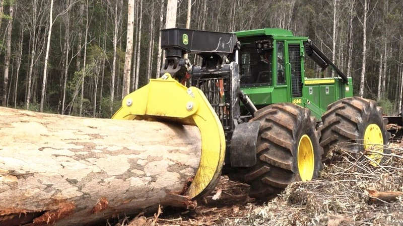 World's Modern Heavy Machine Working Fast Skill Hydaulic Equipment Shredder Big Tree Shear Stump