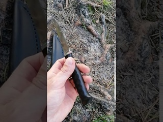 Нож Грибник Х12МФ, Граб, камень.
