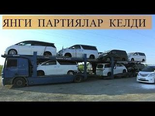 Toyota Alphard, Toyota Vellfire, Toyota Estima