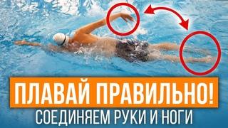 Соединяем ноги и руки в кроле правильно! 5 упражнений, которые поставят технику плавания кролем