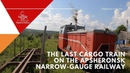 Последний грузовой поезд Апшеронской УЖД The last cargo train on the Apsheronsk narrowgauge railway