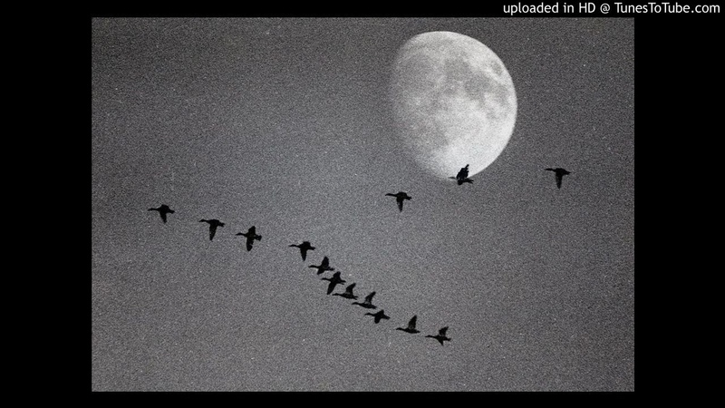 Советские песни Летят Перелетные Птицы 1948