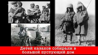Жестокая книга о казахах русского писателя По данным обкома погибло 59% казахов