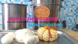 Моцарелла, Скаморца, Косичка / Проверенный способ сделать ВЫТЯЖНОЙ  СЫР из козьего молока