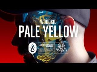 Woodkid - Pale Yellow (Lyric Video)