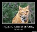 Личный фотоальбом Игоря Рябова