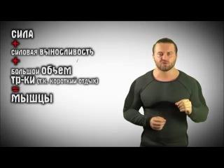 Денис Борисов про то, почему ты ДРЫЩ ненавидишь качков!