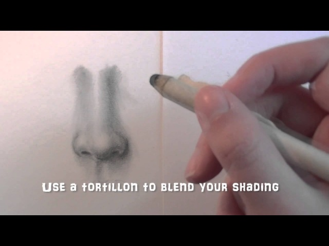 How To Draw a Realistic Nose Frontview