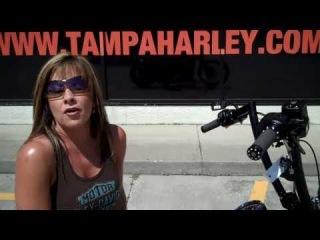2010 HARLEY-DAVIDSON CUSTOM CROSS BONES FOR SALE IN TAMPA FLORIDA FL USA AMERICA