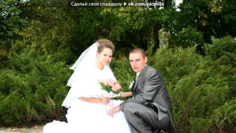 грибник поздравление на свадьбу под песню бродяга те