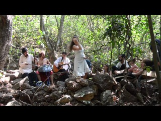 "ARAMBOLLA - ""THE BANYAN TREE"",  Dreamland (Live in the Jungle)"
