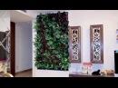 Lafasad Kazakhstan. который занимаемся вертикальным озеленением для дома и офиса. Хороший вариант для оформления офиса и дома!