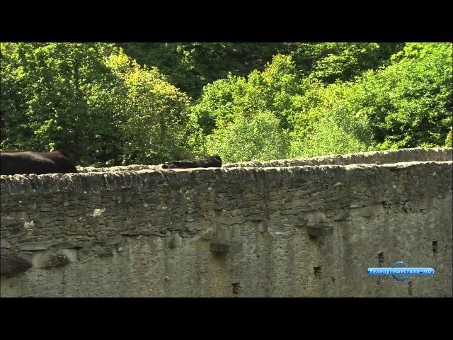 Прекрасная Италия Валле Д'Аоста от Аосты до Мон Блана