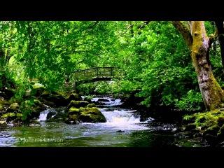 Relax 8 Hours-Relaxing Nature Sounds-Study-Sleep-Meditation-Water Sounds-Bird Song