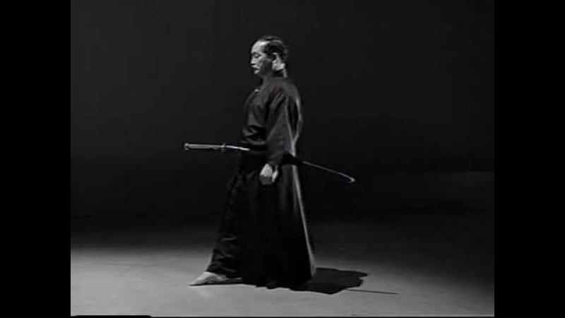 Iaido Kata Seitei 09 Kyuhon me Soete zuki High quality
