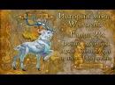 WarCraft История мира Warcraft Глава 22 Война древних Духи Калимдора и план Иллидана