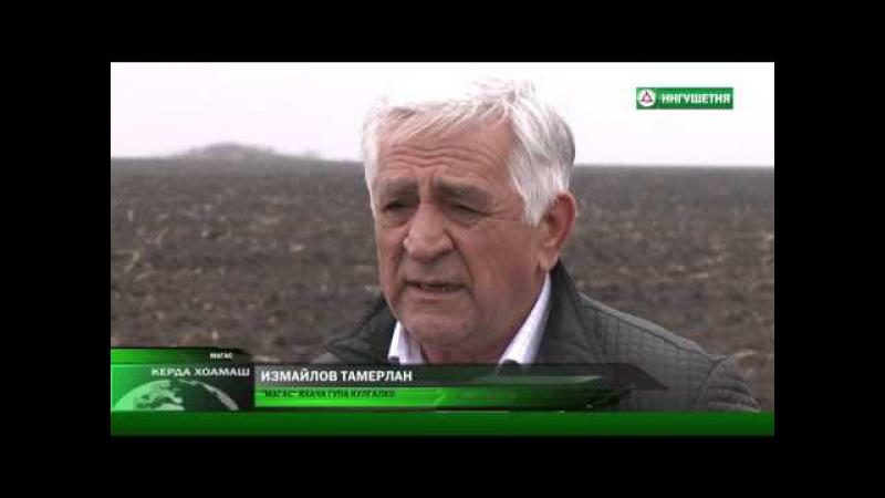 11.03.2016 | КЕРДА ХОАМАШ С ФАТИМОЙ ГАГИЕВОЙ